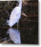 White Egret And Reflection Metal Print