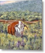 White Face Bull Metal Print