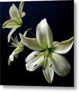 White Lilies On Blue Metal Print