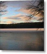 White Oak Pond Metal Print