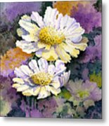 White Scabious Metal Print