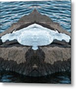 White-throated Dipper Mirrored Metal Print
