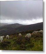 Wicklow Mountains View Metal Print