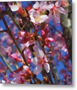 Wild Cherry Tree In Bloom Metal Print