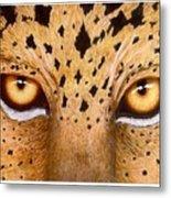 Wild Eyes Metal Print by Lorraine Foster