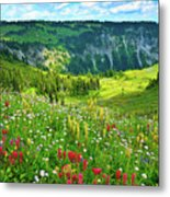 Wild Flowers Blooming On Mount Rainier Metal Print