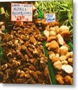 Wild Morell Mushrooms Metal Print
