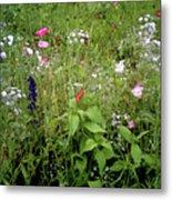 Wildflower Garden Metal Print