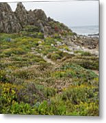Wildflowers At China Rock - Pebble Beach - California Metal Print