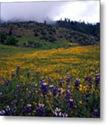 Wildflowers In Fog 2 Metal Print
