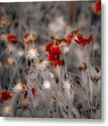 Wildflowers Of The Dunes Metal Print