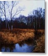 Winding Creek 2 Metal Print