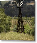 Windmill And Vineyards Metal Print