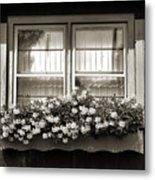 Window Flower Box 2 Metal Print