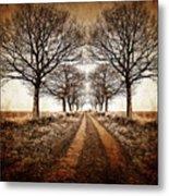 Winter Avenue Metal Print