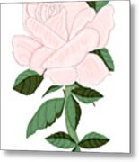 Winter Blush Rose Metal Print