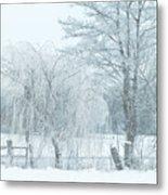 Winter Chill Metal Print