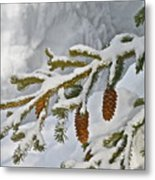 Winter Dusting Metal Print