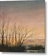 Winter Field Metal Print