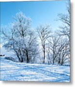 Winter Lights Metal Print