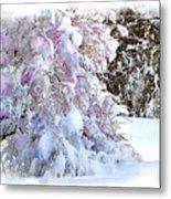 Winter Lilac Metal Print