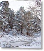 Winter On The Chase Metal Print
