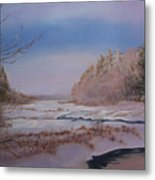 Winter On The Pond Metal Print
