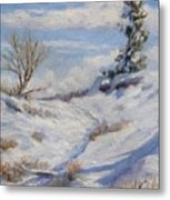 Winter Path Metal Print by Debra Mickelson