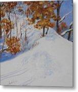 Winter Ridge Metal Print