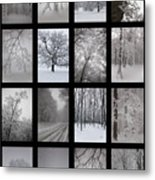 Winter Time Metal Print by Gabriela Insuratelu