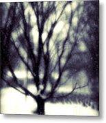 Winter Tree 3 Metal Print