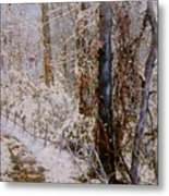Winter Wonderland Metal Print by Ben Kiger
