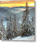 Winterlands Metal Print