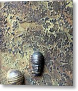 Without Bodies Metal Print