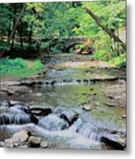 Wolf Creek Metal Print
