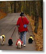 Woman Walks Her Army Of Dogs Dressed Metal Print