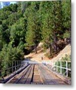 Wooden Bridge Over Deep Gorge Metal Print
