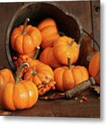 Wooden Bucket Filled With Tiny Pumpkins Metal Print by Sandra Cunningham