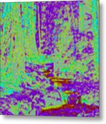 Woodland Forest D4 Metal Print