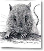 Woodland Jumping Mouse Metal Print