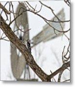 Woodpecker And Windmill Metal Print