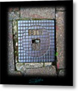 World View Metal Print