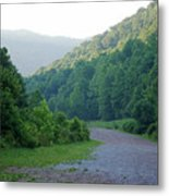 Wv Hollow Metal Print