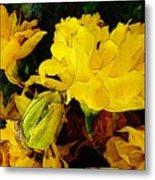 Yellow Daffodils 6 Metal Print