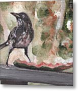Yellow Eyed Bird Metal Print