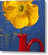 Yellow Iceland Poppy Red Pitcher Metal Print