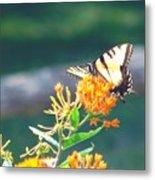 Yellow Monarch Butterfly Metal Print
