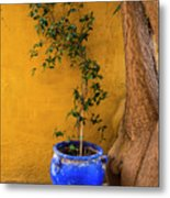Yellow Wall, Blue Pot Metal Print