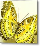 Yellow Wings In Gold Metal Print
