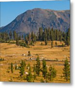 Yosemite Highlands Metal Print